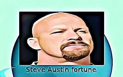 Steve Austin fortune