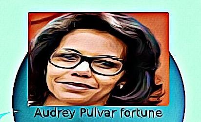 Audrey Pulvar fortune