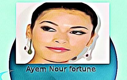 Ayem Nour fortune