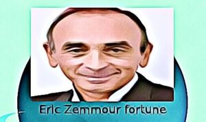Eric Zemmour fortune