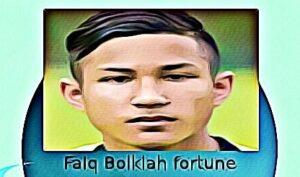 Faiq Bolkiah fortune
