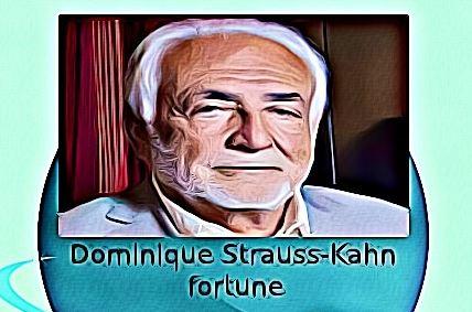 Dominique Strauss-Kahn fortune