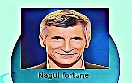 Nagui fortune