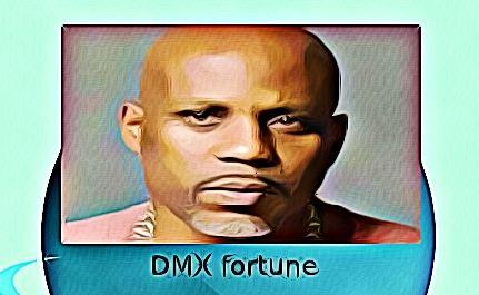 DMX fortune