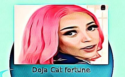 Doja Cat fortune